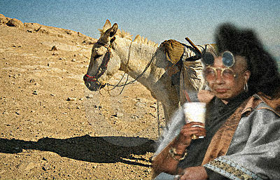 Jay'Saul Donkey Business